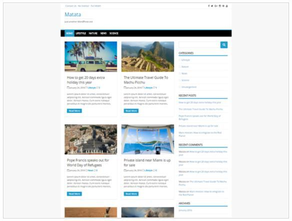 Top Free WordPress Themes-Matata