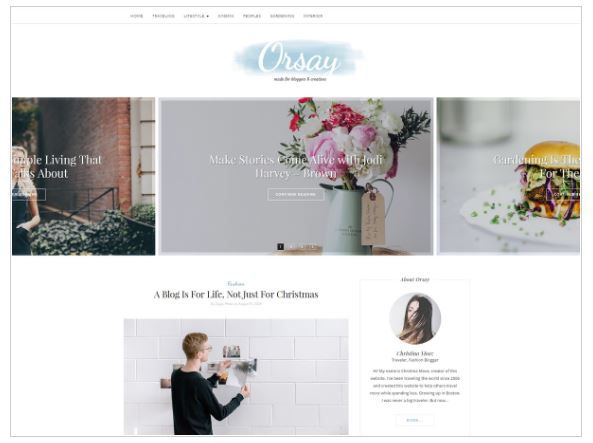 Top Free WordPress Themes-Orsay